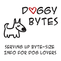 doggybytes raw food pet dog blog