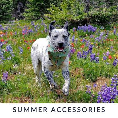 Eco-Pup Dog Clothing eco-friendly organic dog pet scarf bandanas