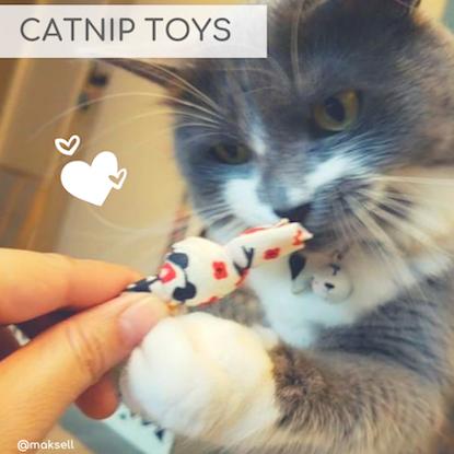 Eco-Pup Dog Clothing eco-friendly organic catnip toys