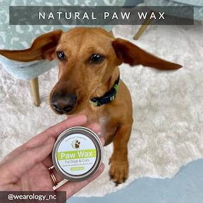 Eco-Pup dog paw wax natural handmade moisturizer