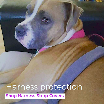 Eco-Pup dog harness strap cover wrap protector recycled organic