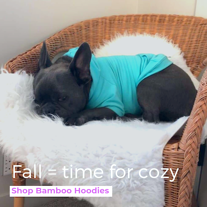 Eco-Pup Bamboo Dog Apple Hoodie Sweater
