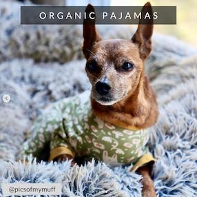 Eco-Pup dog pajamas organic pjs