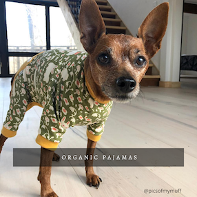 Eco-Pup dog pajamas organic pjs
