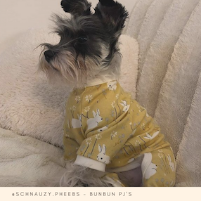 Eco-Pup Dog Clothing Organic BunBun PJs
